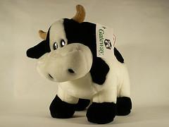 gateway-cow