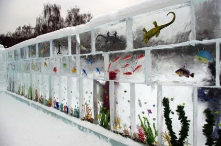 Russian Ice Aquarium