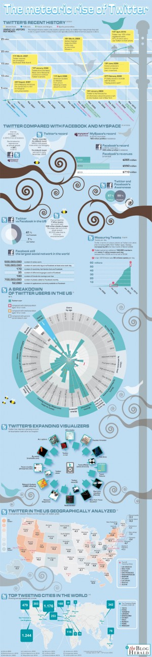infographic twitter rise 5 Great Infographics Tell the Story of Top Social Media and Online Brands