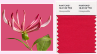 pantone 2011 color of the year Brands Adopt the Pantone Color of the Year for 2011
