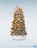 Pfizer smoking