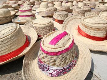 hats social leader