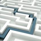 agile executive maze